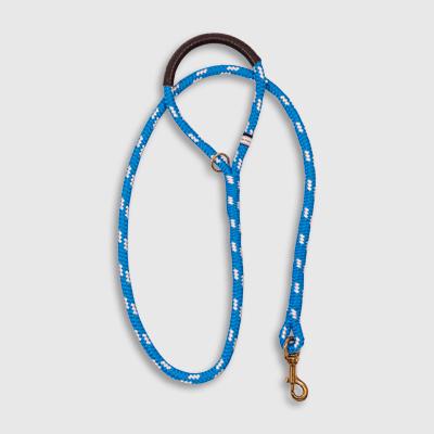 Standard Blue Calypso leash made by Fair Leads