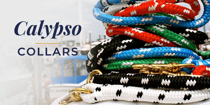 Fair Leads Calypso Collar